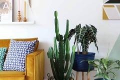 Livingroom-BrightColors-Plants-Patterns-OrganicDesign…
